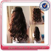 No Shedding No Mix No Tangle 5a 100% Brazilian Hair Clip-On Hair Extension