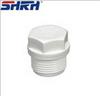 pvc sanitary pipes fittings/pvc pipes suppliers/pvc pipe fittings plug