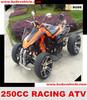 EEC 250CC ATV Racing