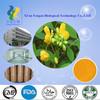 Herb Medicine Extract rhein/rhein 98% powder