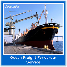 Ocean Freight Customs Declaration Agent to Mexico