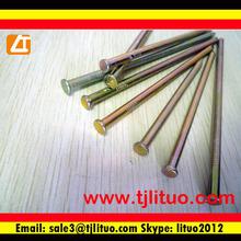 common nail buy from anping ying hang yuan