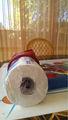 3 capas de papel higiénico