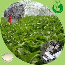 Lowest stevia powder price bulk pure stevia extract