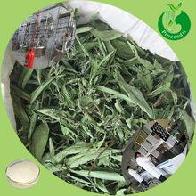 Bulk pure stevia extract stevioside stevia sweetener