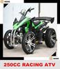 ATV 250CC Quad BIke for Sale