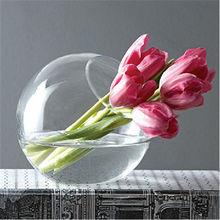 Planta flor vasilha de vidro