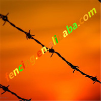 Cheap Galvanized Concertina Antique Barbed Wire for Sale / Galvanized barbed wire