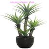 Q101035 artificial indoor plants garden decoration plastic agave artificial bonsai