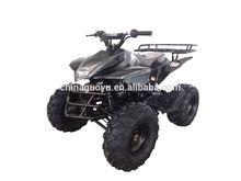 125cc ATV with 7 inch tire mini kids bike