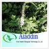 Black Cohosh Extract; Triterpenoid saponins 2.5%-8%
