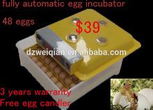 New Condition and Chicken,Reptile,Bird,Emu,Ostrich,Turkey,Goose,Duck,quail .snack Usage 48 mini egg incubator
