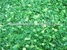 CHINA frozen spring onion cut