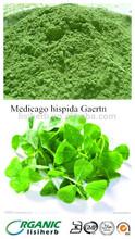 Suplemento de alimentos clorofila de alfalfa/alfalfa orgánica en polvo/alfalfa orgánica