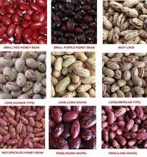 Científica nombre de granos de los granos de precio / diferentes tipos de frijoles secos de 2014 nueva cosecha
