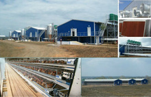 steel frame chicken house building exported to Australia