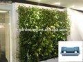 Vertical de los sistemas de ambientalización, vertical de la pared del jardín de flores en macetas plantas&