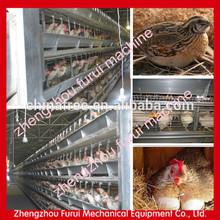 La fabricación de la ce para la jaula de codorniz/granja de codornices jaula