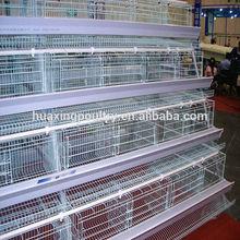 Galvanized multi-tier chicken wire cage