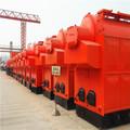 10 toneladas de madera de la quema de paja de la caldera de vapor hecho en china