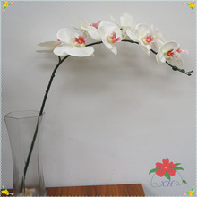 Dongguan Haina factory direct supplies wholesale artificial orchid flowers