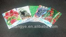 Seed Packet, Seed Sachet, Seed Bag