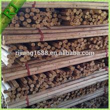 Natural strong eucalyptus logs wood timber price