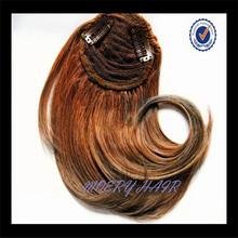 Chinese Human Hair Wig Bang