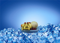 2014 New design ice box 1.2L fruit bowl cooling ice box for fruit fresh and vegetable fresh
