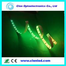 DVI LPD8806 LED strip light digital led strip pixel lighting