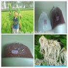 hot sale! chlorate potassium potash fertilizer