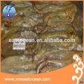 preço de fresh octopus