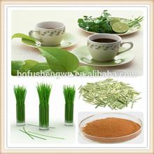 Lemongrass pó/lemon grass pó/cidreira extrato