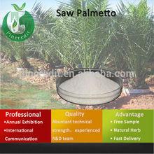 45% Saw Palmetto Extract/saw palmetto powder/Saw Palmetto