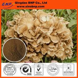BNP Supply High Quality Polysaccharides & Triterpenes Rich in Maitake Mushroom Extract