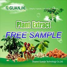 100% Nature Pure Organic high quality healthy Jasmine Tea extract