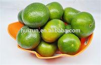 2014 fresh mandarin orange citrus fruit hz006