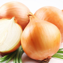 fresh cheap onion in 2014 from China