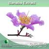 high qualtiy 1% corosolic acid banaba extract