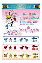 App control sound birds for kids