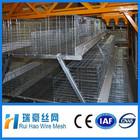 H type galvanized steel baby breeding cage / chicken house
