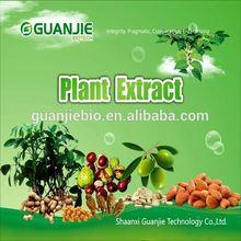 Top Quality Organic Black Cohosh extract