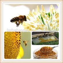 corn pollen/dates pollen powder/cell wall broken pine pollen powder