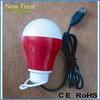 Promotion & Wholesale computer 12 V LED bulb lampe with USB plug