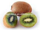 delicious iqf kiwi fruit