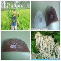 Potassium Chlorate 99.5% Anti-caking White Powder KCLO3 Chlorate De Potassium
