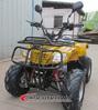 110cc EEC full automatic ATV for 2 person