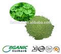 Alfalfa orgánica en polvo/harina de alfalfa/alfalfa deshidratada en polvo de hierba