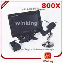 Led lupa lupa lupa 800X microscopio digital AV - salida de vídeo 8 LEDs