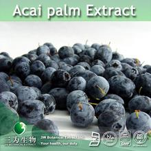 3W supply Acai palm fruit Extract / Acai palm Extract / Acai palm berry Extract
